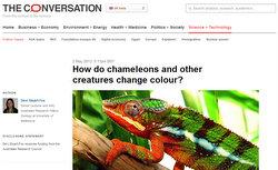 Chameleon-Conversation