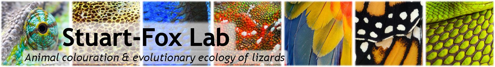 Stuart-Fox Lab | Devi Stuart-Fox